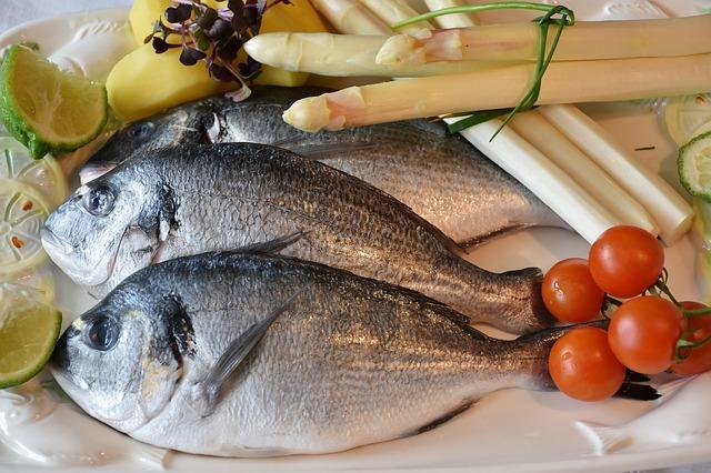 Proviva ryby testy