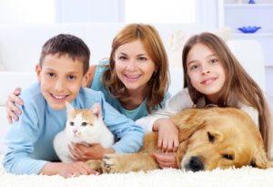 proviva testy alergiczne na zwierzeta